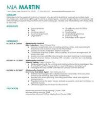 A Sample Combination Resume Using Aspects of Chronological and Functional  Formats  View More   http   www vault com resumes sample combination resu