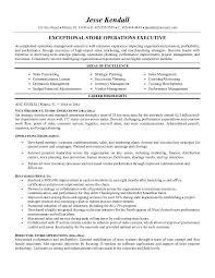 executive resume sample   best template collectionexecutive director resume sample