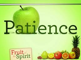 essay on patience and perseverance