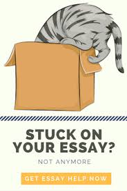 the stress free guide to apa essay format   essay writing