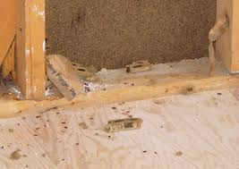 Image result for public domain images of insulation