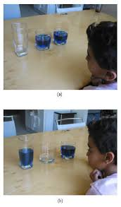 Piaget     s Theory of Conservation  When One Cup of Water is Less     Science Buddies Human Behavior Science Project A preoperational stage child exhibiting conservation of mass reasoning