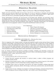resume template objectives professional resumes throughout what 79 terrific what does a professional resume look like template