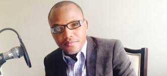 Image result for picture of nnamdi kalu wife