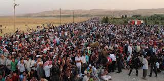 Bildergebnis für refugees