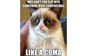 31 Great Grumpy Cat Memes That Will Make You Less Grumpy - Snappy ... via Relatably.com