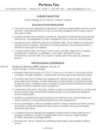 resume  project manager for internet   software companyexample resume  it project manager