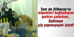 Mehmet Topuz'un Sivas Kangal'ı da kutlamalarda göbek attı