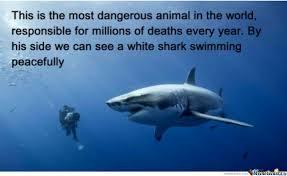 The Most Dangerous Animal On The Planet! by rebar77 - Meme Center via Relatably.com