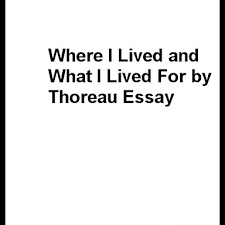 world essay   an essay by einstein    the world as i see it    where i lived and what i lived for essay