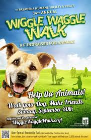 best images of dog walking poster template dog walking animal fundraiser event ideas