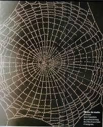 """Résultat de recherche d'images pour """"toile d'araignée"""""""