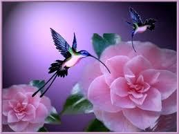 Resultado de imagem para anjos de amor