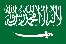 Image result for saudi flag