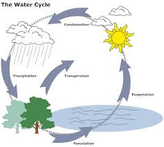 easy drawn water cycle youtube   water cycle gallry    water cycle drawing on easy drawn water cycle