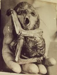 Bildresultat för tjernobylolyckan bilder