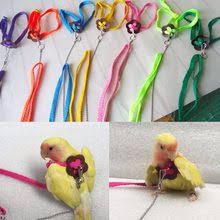 Best value <b>Bird Leash</b> – Great deals on <b>Bird Leash</b> from global <b>Bird</b> ...