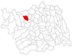 Solonț