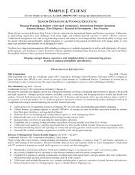 finance executive resumes template finance executive resumes