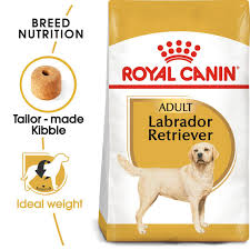 <b>Royal Canin Labrador Retriever</b> at Fetch.co.uk | The Online Pet Store