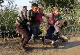 refugiados sirios cruzan las concertinas europeas de la vergüenza