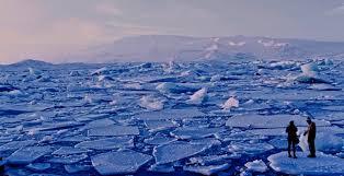 global warming essay   privatewriting global warming essay