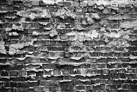 Resultado de imagen para WALLS PHOTOGRAPHY BY