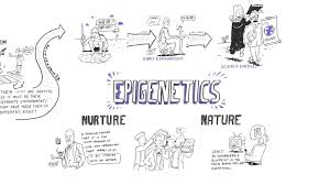 epigenetics nature vs nurture