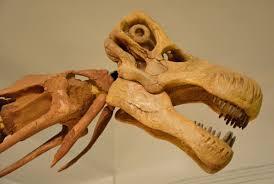 Nemegtosauridae