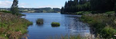 [crépuscule]lac