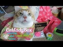 CatLadyBox Unboxing And Review | April 2019 - YouTube