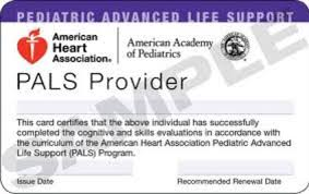 Image result for aha pals