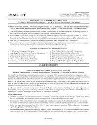 it executive resume senior it executive resume