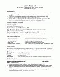 combination resume   best resume collectioncombination resume sample