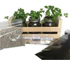 Kitchen Windowsill Herb Garden Buy Kitchen Herb Garden Kit