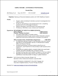 professional resume samples for it experienced samples professional resume samples for it experienced
