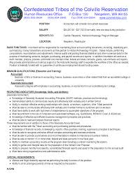 accountant resume cv