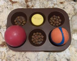 Image result for muffin tin dog toy