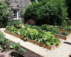Small Picture Vegetable Garden Design Markcastroco