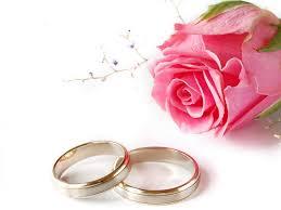 два кольца и розовая роза