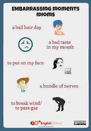 embarrassing moments idioms live learn embarrassing moments idioms infographic a bad hair day a bad taste in my mouth