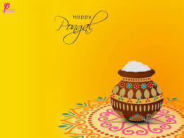 images about pongal wishes seasons cards and 1000 images about pongal wishes seasons cards and festivals