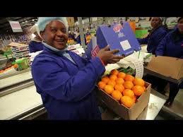 <b>Oranges</b> of South <b>Africa</b> - YouTube