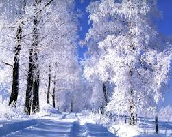 Картинки по запросу зима мороз