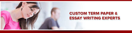 our professional essay writers  apa and sociology term paperterm paper essay writing experts