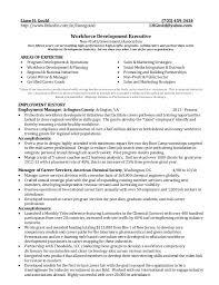 writers resume   more informationbanking sample resume from resume writers  com  professional cv writers glasgow fresh essays emergencybeaconcorp      lance writer resume