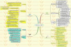federalism essay paper essay on federalism in lifts federalism essay paper