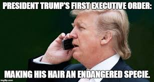 Image result for Donald Trump funny picture