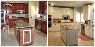 Diy Staining Kitchen Cabinets Staining Kitchen Cabinets Before And After Pictures Cabinets