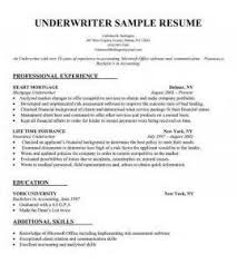 cv sample in french   free cv template students ukbuild your own resume online
